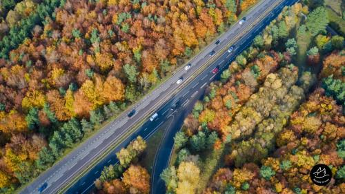 A11 Norfolk Autumn Trees - Taken By Norfolk Drone